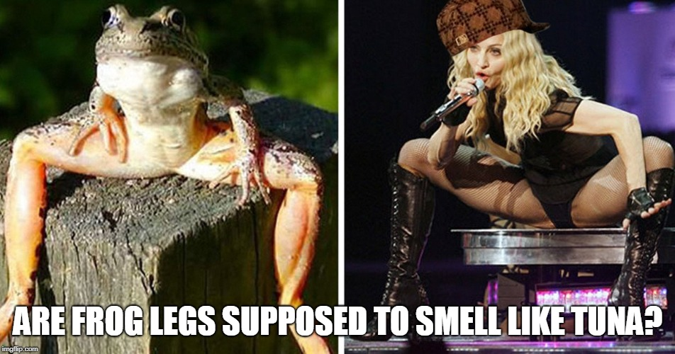 ARE FROG LEGS SUPPOSED TO SMELL LIKE TUNA? | image tagged in frog legs,scumbag,smelly,tuna,madonna | made w/ Imgflip meme maker