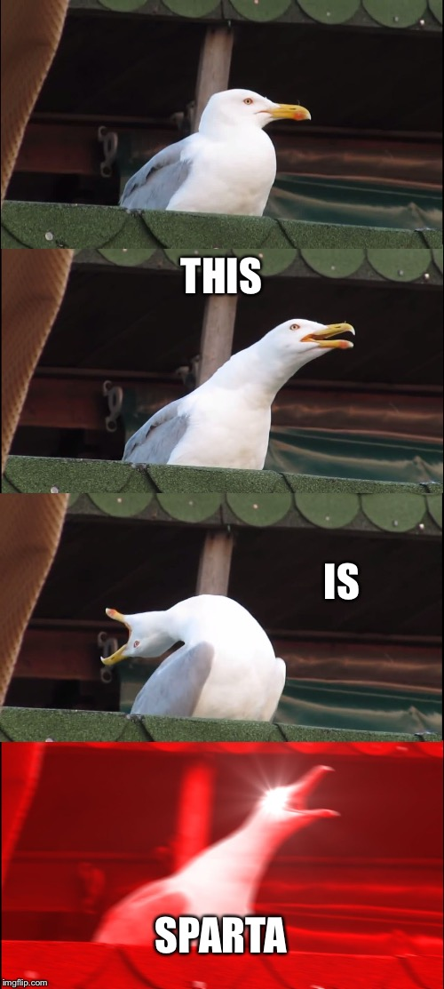 Inhaling Seagull Meme | THIS IS SPARTA | image tagged in memes,inhaling seagull,DC_Cinematic | made w/ Imgflip meme maker
