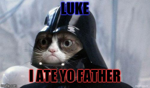 Grumpy Cat Star Wars | LUKE I ATE YO FATHER | image tagged in memes,grumpy cat star wars,grumpy cat | made w/ Imgflip meme maker