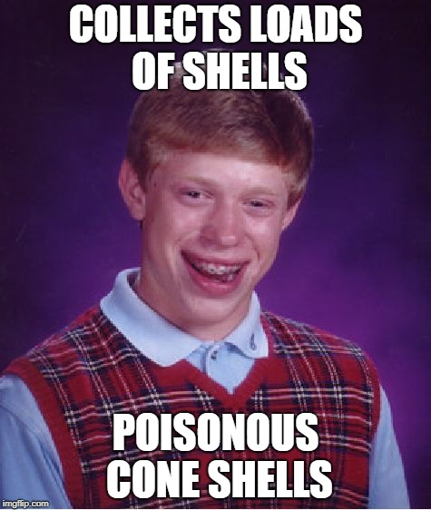Bad Luck Brian Meme | COLLECTS LOADS OF SHELLS POISONOUS CONE SHELLS | image tagged in memes,bad luck brian | made w/ Imgflip meme maker