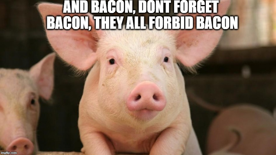 AND BACON, DONT FORGET BACON, THEY ALL FORBID BACON | made w/ Imgflip meme maker