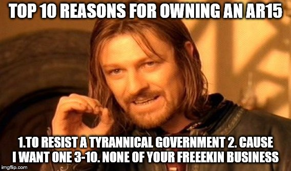 One Does Not Simply Meme | TOP 10 REASONS FOR OWNING AN AR15 1.TO RESIST A TYRANNICAL GOVERNMENT 2. CAUSE I WANT ONE 3-10. NONE OF YOUR FREEEKIN BUSINESS | image tagged in memes,one does not simply | made w/ Imgflip meme maker