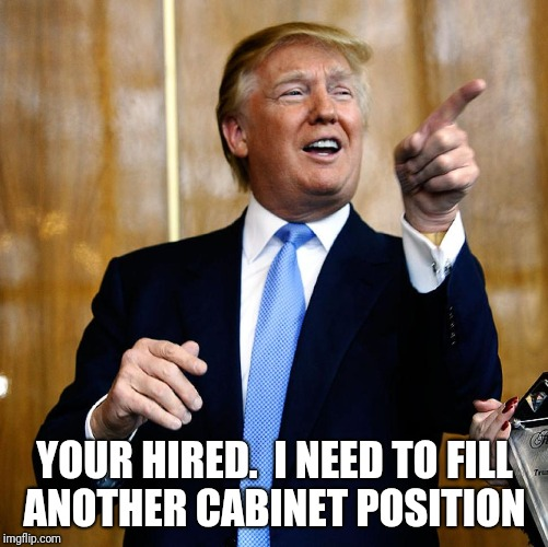 YOUR HIRED.  I NEED TO FILL ANOTHER CABINET POSITION | made w/ Imgflip meme maker
