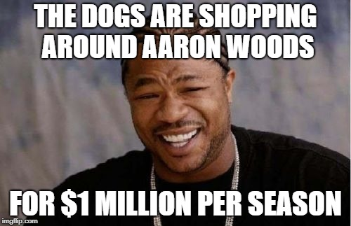 Yo Dawg Heard You Meme | THE DOGS ARE SHOPPING AROUND AARON WOODS FOR $1 MILLION PER SEASON | image tagged in memes,yo dawg heard you | made w/ Imgflip meme maker