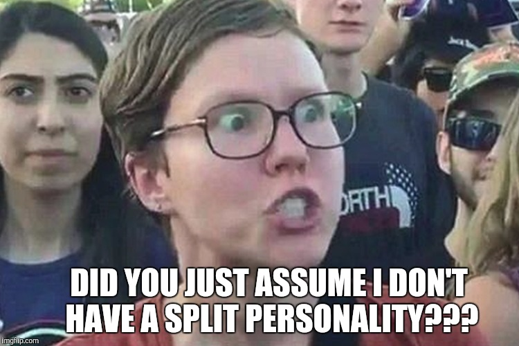 DID YOU JUST ASSUME I DON'T HAVE A SPLIT PERSONALITY??? | made w/ Imgflip meme maker