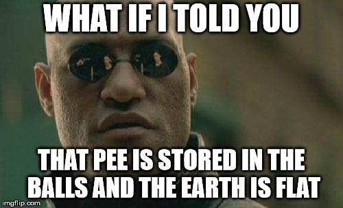 Matrix Morpheus Meme | WHAT IF I TOLD YOU THAT PEE IS STORED IN THE BALLS AND THE EARTH IS FLAT | image tagged in memes,matrix morpheus | made w/ Imgflip meme maker