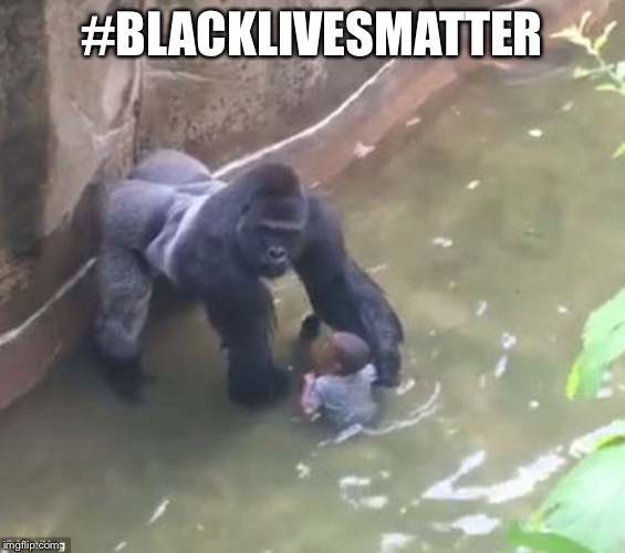 Harambe | #BLACKLIVESMATTER | image tagged in harambe | made w/ Imgflip meme maker