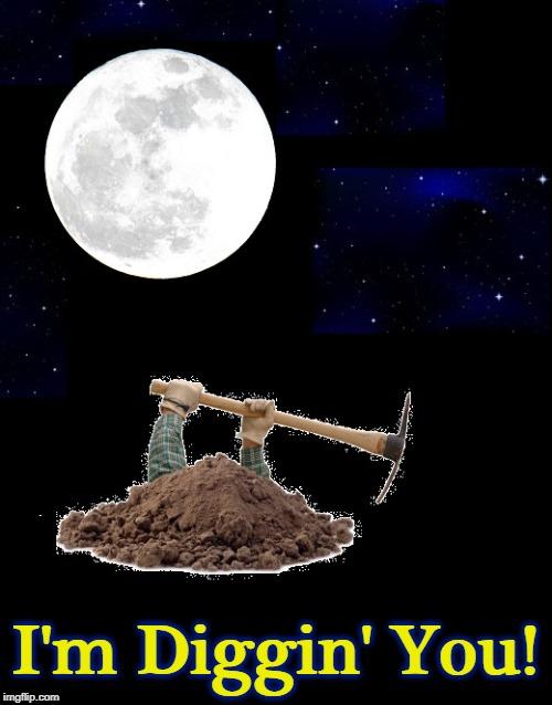 digging a hole at night Memes & GIFs - Imgflip