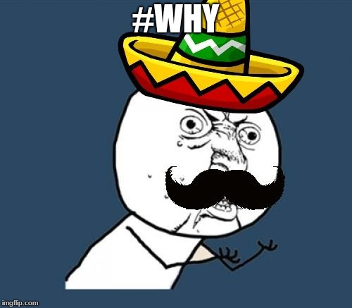 #WHY | image tagged in y u no mexican | made w/ Imgflip meme maker