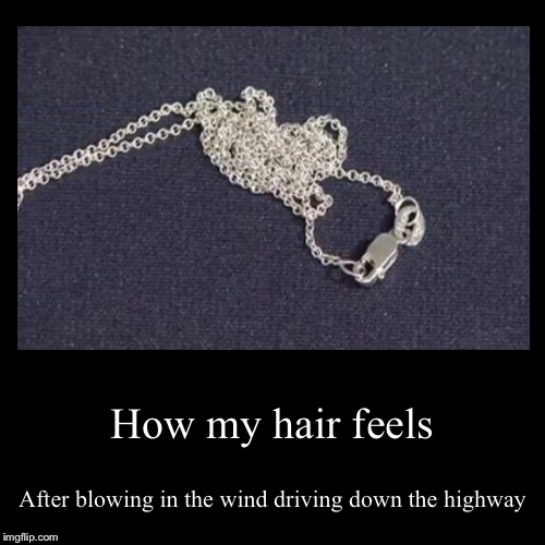 How my hair feels | After blowing in the wind driving down the highway | image tagged in funny,demotivationals | made w/ Imgflip demotivational maker