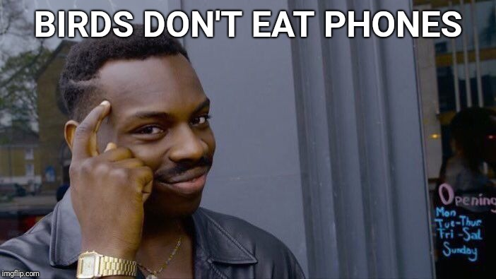 Roll Safe Think About It Meme | BIRDS DON'T EAT PHONES | image tagged in memes,roll safe think about it | made w/ Imgflip meme maker