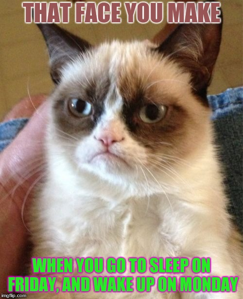 When You Know Your Life Has Lost Meaning | THAT FACE YOU MAKE WHEN YOU GO TO SLEEP ON FRIDAY, AND WAKE UP ON MONDAY | image tagged in memes,grumpy cat | made w/ Imgflip meme maker