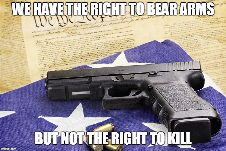 gun constitution | WE HAVE THE RIGHT TO BEAR ARMS BUT NOT THE RIGHT TO KILL | image tagged in gun constitution | made w/ Imgflip meme maker