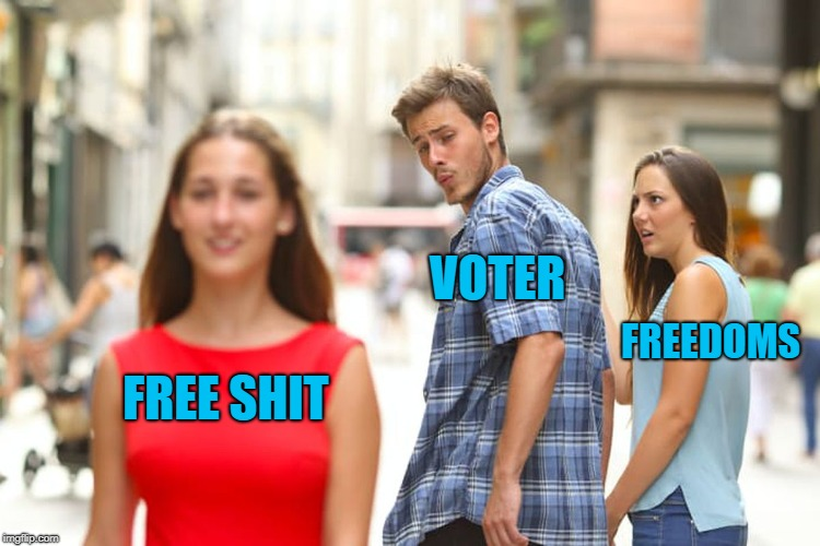 Distracted Boyfriend Meme | FREE SHIT VOTER FREEDOMS | image tagged in memes,distracted boyfriend | made w/ Imgflip meme maker