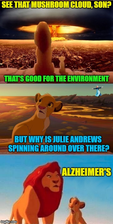 End of the world? |  SEE THAT MUSHROOM CLOUD, SON? THAT'S GOOD FOR THE ENVIRONMENT; BUT WHY IS JULIE ANDREWS SPINNING AROUND OVER THERE? ALZHEIMER'S | image tagged in funny memes,simba,lion king,whatever | made w/ Imgflip meme maker