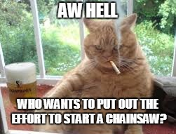 AW HELL WHO WANTS TO PUT OUT THE EFFORT TO START A CHAINSAW? | made w/ Imgflip meme maker