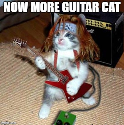 NOW MORE GUITAR CAT | made w/ Imgflip meme maker