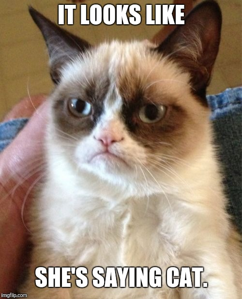 Grumpy Cat Meme | IT LOOKS LIKE SHE'S SAYING CAT. | image tagged in memes,grumpy cat | made w/ Imgflip meme maker