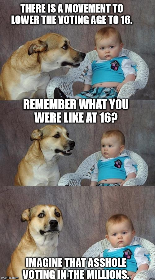 Dad Joke Dog Meme | THERE IS A MOVEMENT TO LOWER THE VOTING AGE TO 16. REMEMBER WHAT YOU WERE LIKE AT 16? IMAGINE THAT ASSHOLE VOTING IN THE MILLIONS. | image tagged in memes,dad joke dog | made w/ Imgflip meme maker