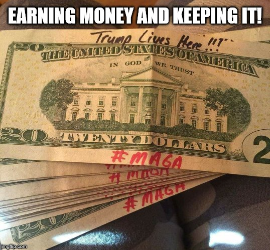 EARNING MONEY AND KEEPING IT! | image tagged in maga | made w/ Imgflip meme maker