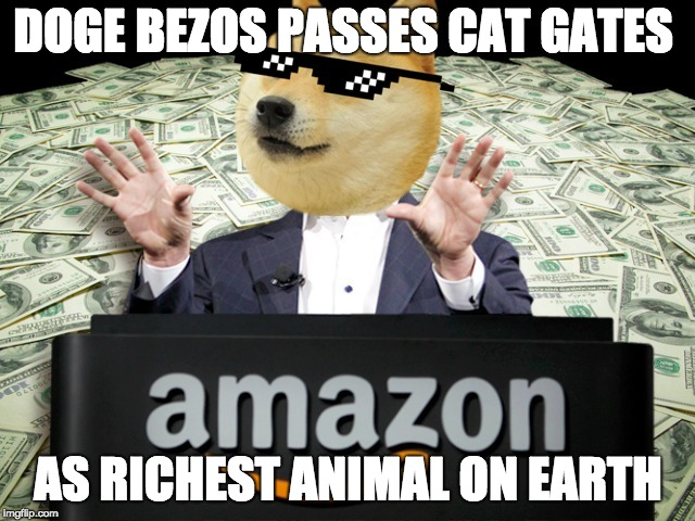 DOGE BEZOS PASSES CAT GATES AS RICHEST ANIMAL ON EARTH | image tagged in doge,bezos,gates,richest,rich doge | made w/ Imgflip meme maker