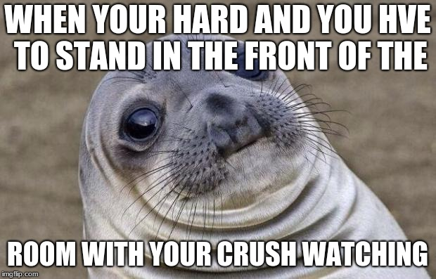 Awkward Moment Sealion Meme | WHEN YOUR HARD AND YOU HVE TO STAND IN THE FRONT OF THE ROOM WITH YOUR CRUSH WATCHING | image tagged in memes,awkward moment sealion | made w/ Imgflip meme maker