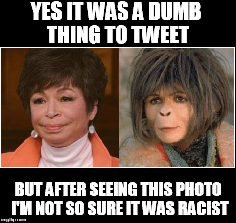 Planet of the Apes |  YES IT WAS A DUMB THING TO TWEET; BUT AFTER SEEING THIS PHOTO I'M NOT SO SURE IT WAS RACIST | image tagged in roseanne | made w/ Imgflip meme maker