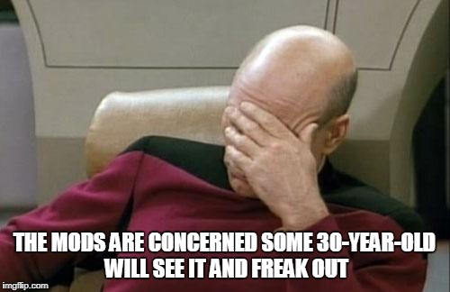 Captain Picard Facepalm Meme | THE MODS ARE CONCERNED SOME 30-YEAR-OLD WILL SEE IT AND FREAK OUT | image tagged in memes,captain picard facepalm | made w/ Imgflip meme maker