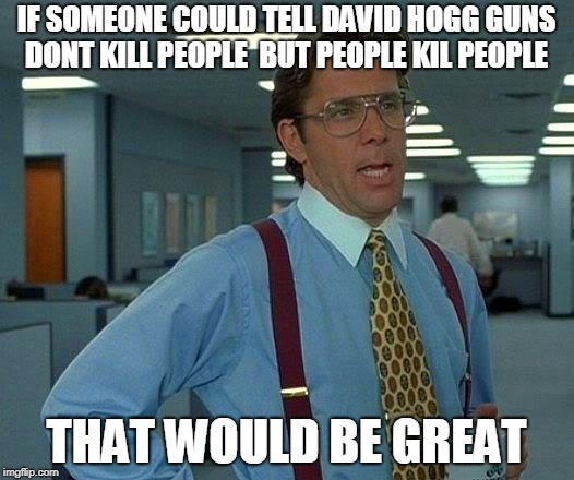 That Would Be Great Meme | IF SOMEONE COULD TELL DAVID HOGG GUNS DONT KILL PEOPLE  BUT PEOPLE KIL PEOPLE THAT WOULD BE GREAT | image tagged in memes,that would be great | made w/ Imgflip meme maker