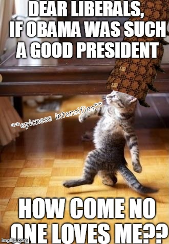 Cool Cat Stroll | DEAR LIBERALS, IF OBAMA WAS SUCH A GOOD PRESIDENT HOW COME NO ONE LOVES ME?? **epicness intensifies** | image tagged in memes,cool cat stroll,scumbag | made w/ Imgflip meme maker