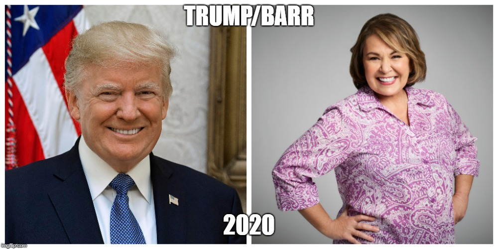 TRUMP/BARR 2020 | image tagged in funny,trump,roseanne barr,twitter | made w/ Imgflip meme maker