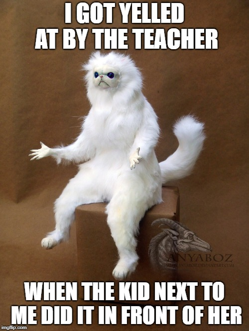 Persian Cat Room Guardian Single Meme | I GOT YELLED AT BY THE TEACHER WHEN THE KID NEXT TO ME DID IT IN FRONT OF HER | image tagged in memes,persian cat room guardian single | made w/ Imgflip meme maker