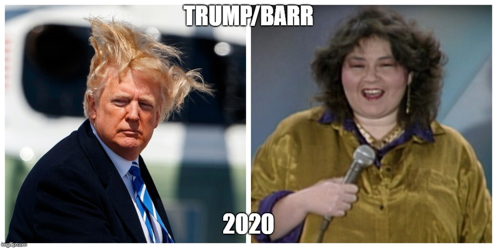 TRUMP/BARR 2020 | image tagged in trump,deplorable,roseanne barr,funny,twiitter | made w/ Imgflip meme maker