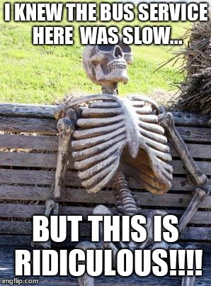 Waiting Skeleton Meme | I KNEW THE BUS SERVICE HERE  WAS SLOW... BUT THIS IS RIDICULOUS!!!! | image tagged in memes,waiting skeleton | made w/ Imgflip meme maker