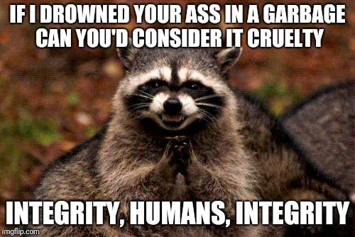 Unnatural Death Is Cruelty | IF I DROWNED YOUR ASS IN A GARBAGE CAN YOU'D CONSIDER IT CRUELTY INTEGRITY, HUMANS, INTEGRITY | image tagged in memes,evil plotting raccoon | made w/ Imgflip meme maker