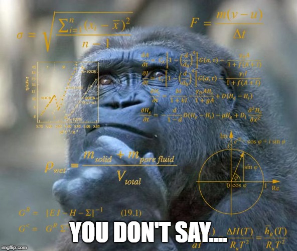 Thinking Math Ape | YOU DON'T SAY.... | image tagged in thinking math ape | made w/ Imgflip meme maker