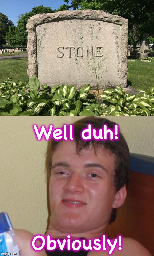 Well duh! Obviously! | image tagged in 10 guy,gravestone | made w/ Imgflip meme maker