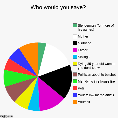 Who would you save? | Yourself, Your fellow meme artists, Pets, Man dying in a house fire, Politician about to be shot, Dying 85-year old wo | image tagged in funny,pie charts | made w/ Imgflip chart maker