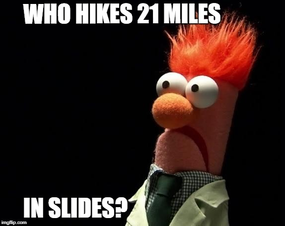 hiking in sandals | WHO HIKES 21 MILES IN SLIDES? | image tagged in muppets | made w/ Imgflip meme maker