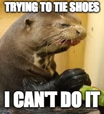 Disgusted Otter | TRYING TO TIE SHOES I CAN'T DO IT | image tagged in disgusted otter | made w/ Imgflip meme maker