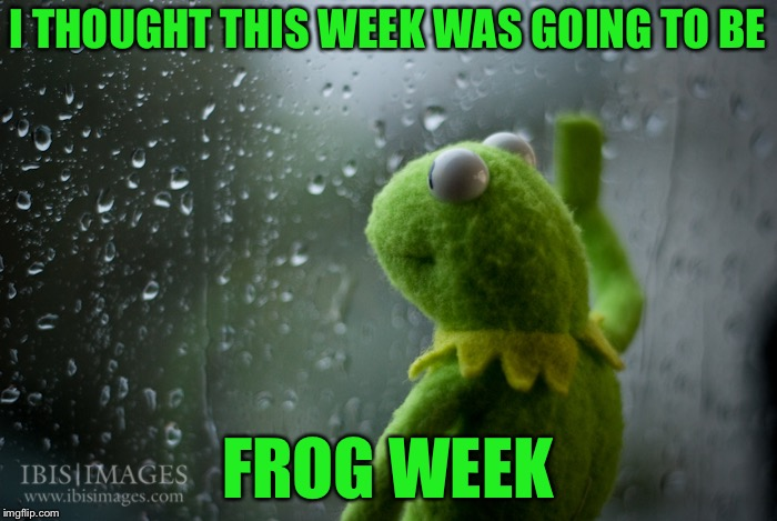 I Like Frogs | I THOUGHT THIS WEEK WAS GOING TO BE FROG WEEK | image tagged in kermit the frog rainy day,sad kermit,memes,frog week | made w/ Imgflip meme maker