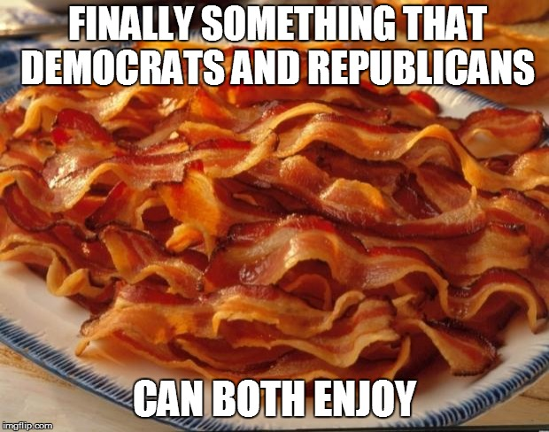 Bacon | FINALLY SOMETHING THAT DEMOCRATS AND REPUBLICANS CAN BOTH ENJOY | image tagged in bacon | made w/ Imgflip meme maker