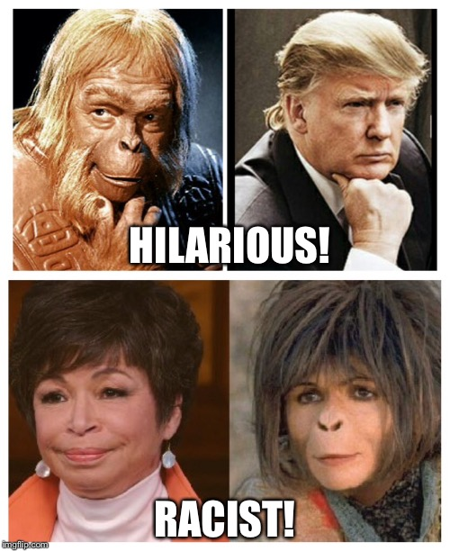 HILARIOUS! RACIST! | image tagged in trump,roseanne,planet of the apes,racist,politics | made w/ Imgflip meme maker