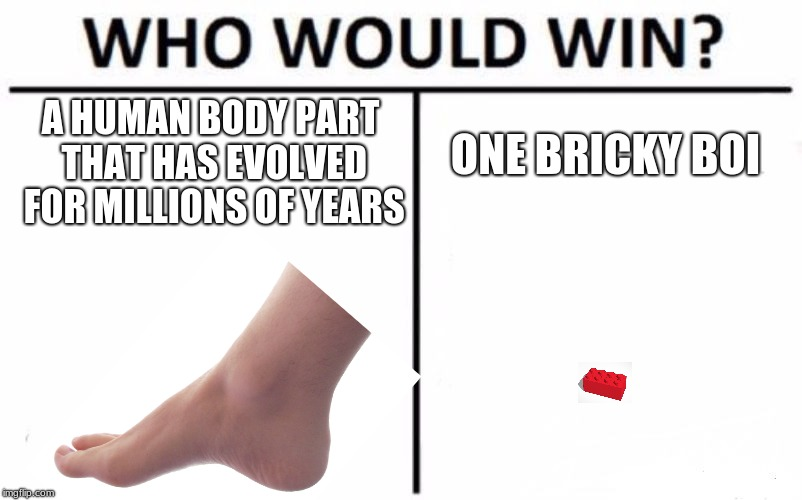 Who Would Win? Meme | A HUMAN BODY PART THAT HAS EVOLVED FOR MILLIONS OF YEARS ONE BRICKY BOI | image tagged in memes,who would win | made w/ Imgflip meme maker
