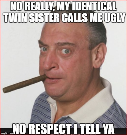 NO REALLY, MY IDENTICAL TWIN SISTER CALLS ME UGLY NO RESPECT I TELL YA | made w/ Imgflip meme maker
