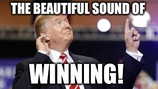 THE BEAUTIFUL SOUND OF WINNING! | image tagged in trump/america winning | made w/ Imgflip meme maker