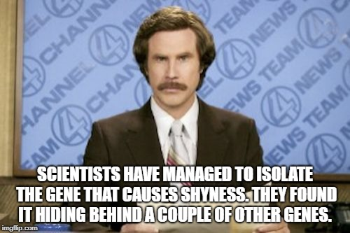 Ron Burgundy | SCIENTISTS HAVE MANAGED TO ISOLATE THE GENE THAT CAUSES SHYNESS. THEY FOUND IT HIDING BEHIND A COUPLE OF OTHER GENES. | image tagged in memes,ron burgundy | made w/ Imgflip meme maker