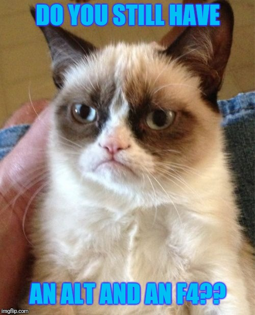 Grumpy Cat Meme | DO YOU STILL HAVE AN ALT AND AN F4?? | image tagged in memes,grumpy cat | made w/ Imgflip meme maker