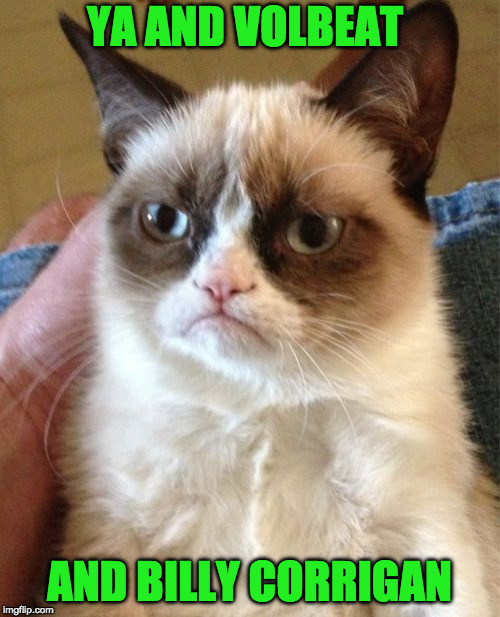 Grumpy Cat Meme | YA AND VOLBEAT AND BILLY CORRIGAN | image tagged in memes,grumpy cat | made w/ Imgflip meme maker