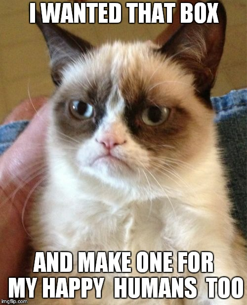 Grumpy Cat Meme | I WANTED THAT BOX AND MAKE ONE FOR MY HAPPY  HUMANS  TOO | image tagged in memes,grumpy cat | made w/ Imgflip meme maker